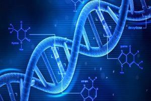 DNA_400x300