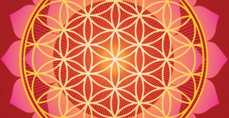 sacred-geometry-flower-of-life-mandala-vector-1022568